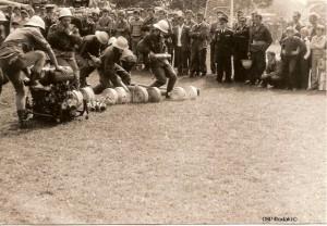 Wierbka 1982
